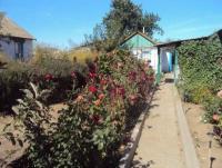 Прикрепленное изображение: День села 2012 подворье 051.jpg